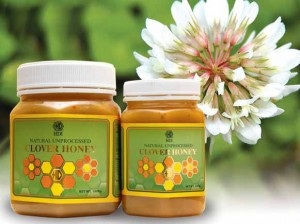 HDI Clover Honey